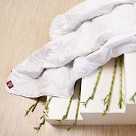 Одеяло всесезонное German Grass Bamboo Grass 200х220см