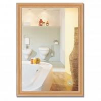 Зеркало в багетной раме Evoform Definite 50х70см