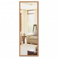 Зеркало в багетной раме Evoform Definite 47х137см