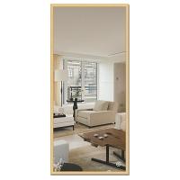 Зеркало в багетной раме Evoform Definite 67х147см