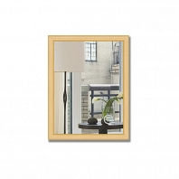 Зеркало в багетной раме Evoform Definite 35х45см