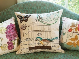 DG Home Pillows