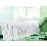 Одеяло шелковое с чехлом Asabella Blankets and Pillows 200x220 см